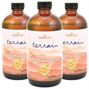 Picture of Terrain Ashwagandha (3 Pack)
